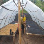 Nativos de San Martín y Loreto trabajan en tecnologías productivas