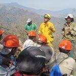 Alertan sobre incremento de incendios forestales en el país