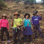 90.7% de peruanos en zonas rurales insatisfechos con medidas económicas del Gobierno