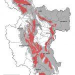 San Martín: Elaboran mapa de zonas de incidencia de plagas en el cultivo de cacao