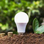 La curva del pato: Una llamada de atención sobre nuestro consumo energético