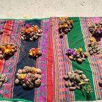 Piden que productos de agrobiodiversidad peruana sean parte de Qali Warma