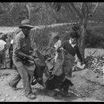 Ayacucho: Justicia para Accomarca