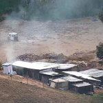 Invertirán S/ 1 millón para reforestar áreas devastadas por minería ilegal