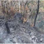 Extinguen incendios forestales en cuatro regiones del país