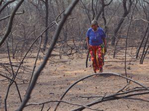Presentarán informe sobre impacto social de incendios forestales en la Amazonía
