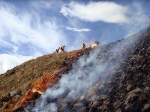Puno: Funcionarios son capacitados en gestión de riesgos por incendios forestales