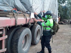 Huánuco: Sujeto investigado por presunto tráfico ilegal de productos forestales maderables