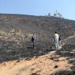 Huánuco: Extinguen incendio forestal en la zona de Oyón Cauri