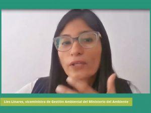 «Ratificar el Acuerdo de Escazú es la mejor decisión para el país»