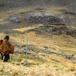 Participación social es clave en inversiones en zonas naturales