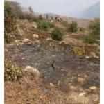 Extinguen incendios forestales en Amazonas y Huánuco