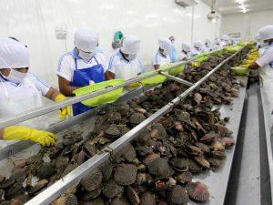 Certificación sanitaria automática promoverá exportación de productos hidrobiológicos