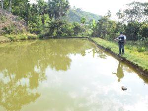 Huánuco: Monzón tendrá primer laboratorio para producir peces tropicales
