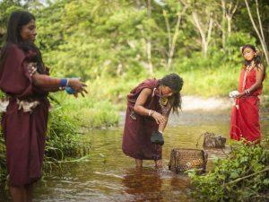 Líderes de organizaciones indígenas capacitados en certificación ambiental