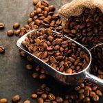 San Martín: Productores de café generaron ventas por más de S/ 2 millones