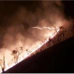 Dos incendios forestales fueron extinguidos en Cusco