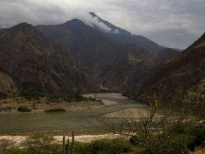 Buscan oportunidades de conservación en bosques secos del Marañón