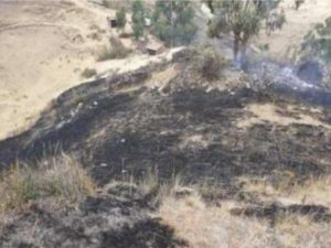 Controlan dos incendios forestales en Cusco y Áncash