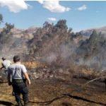 Entinguen incendios forestales en cuatro regiones