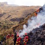 Aprueban proyecto para conservar ecosistemas frente a incendios forestales