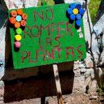 Escolares peruanos impulsarán conciencia ambiental