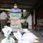 Buscan mitigar el cadmio en el suelo, hojas y en el fruto del cacao en San Martín