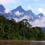 Bajar emisiones de carbono generaría 15 millones de empleos al 2030 en América Latina