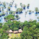 CIDH revisará casos de violencia en la Cuenca Amazónica