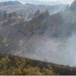Cajamarca: Extinguen incendio forestal en Baños del Inca