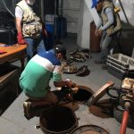Ucayali: Decomisan 41 tortugas charapas en Pucallpa