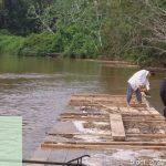 Loreto: Interdictan 2500 pies tablares de la especie Lupuna