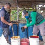 San Martín: Elaborarán biofertilizantes que se aplicarán a 2651 hectáreas