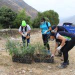Huánuco: Instalarán vivero de especies nativas en Ambo