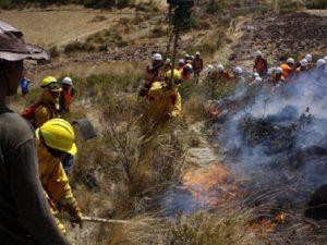 Extinguen incendio forestal en dos distritos del Cusco