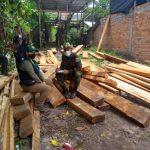 San Martín: Incautan 1725 pies tablares de recurso forestal maderable