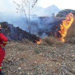 Cajamarca: 700 hectáreas arrasadas por incendios forestales