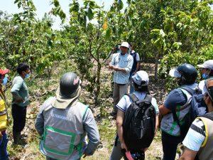 Realizan capacitación para optimizar producción cacaotera en Tingo María