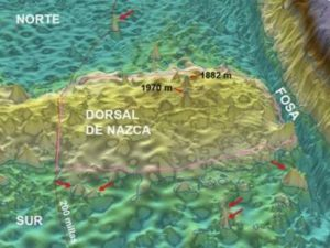 Reserva Natural Dorsal de Nasca fortalecerá conservación marítima peruana