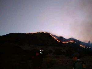 Extinguen tres incendios forestales en Ayacucho y uno en Huancavelica