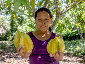 Lanzan concurso para impulsar emprendimientos sostenibles en las áreas protegidas