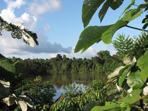 Loreto: 10 años de la Reserva Nacional Pucacuro