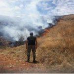 Extinguen incendios forestales en Puno, Pasco, San Martín y Áncash