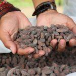 Fomentan emprendimientos sostenibles en áreas naturales protegidas