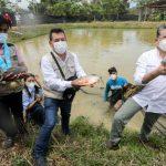 Devida impulsa piscicultura en tres distritos de Huánuco