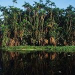 Senamhi usará tecnología de la NASA para monitorear clima en la Amazonía
