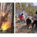 Incendios forestales en Ayacucho, Áncash y Cusco fueron extinguidos