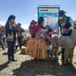 Puno: Entregan maquinaria e insumos a productores de fibra de alpaca