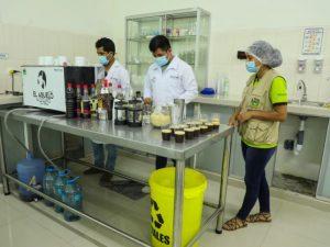 Gorehco promueve producción cafetera en Leoncio Prado