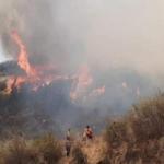 Cusco: Extinguen incendios forestales en Urcos y Ccatcca
